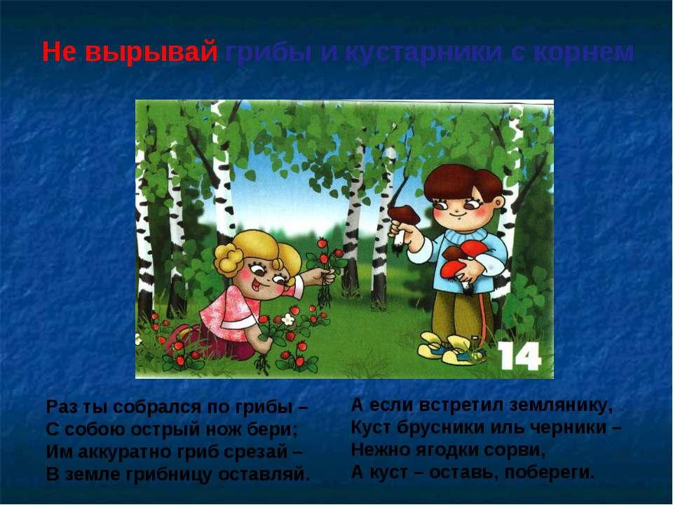 Не вырывай грибы и кустарники с корнем Раз ты собрался по грибы – С собою ост...