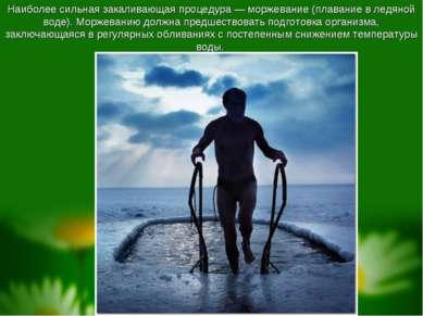Наиболее сильная закаливающая процедура— моржевание (плавание в ледяной воде...