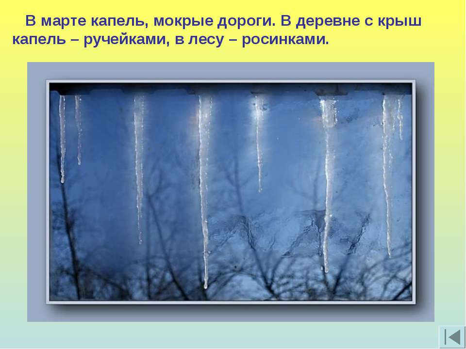 В марте капель, мокрые дороги. В деревне с крыш капель – ручейками, в лесу – ...