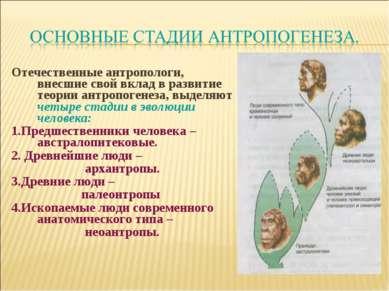 Отечественные антропологи, внесшие свой вклад в развитие теории антропогенеза...