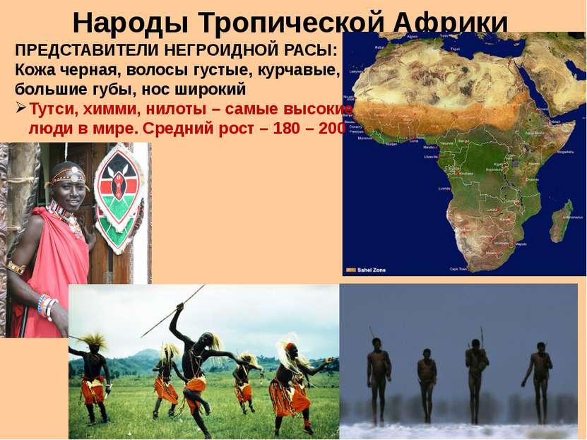 Народы Тропической Африки ПРЕДСТАВИТЕЛИ НЕГРОИДНОЙ РАСЫ: Кожа черная, волосы ...