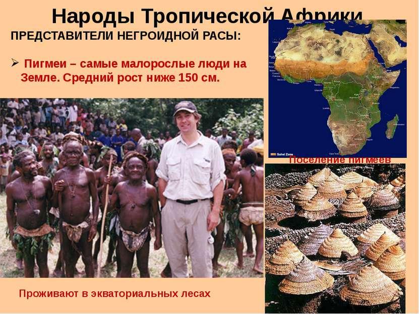 Народы Тропической Африки ПРЕДСТАВИТЕЛИ НЕГРОИДНОЙ РАСЫ: Пигмеи – самые малор...