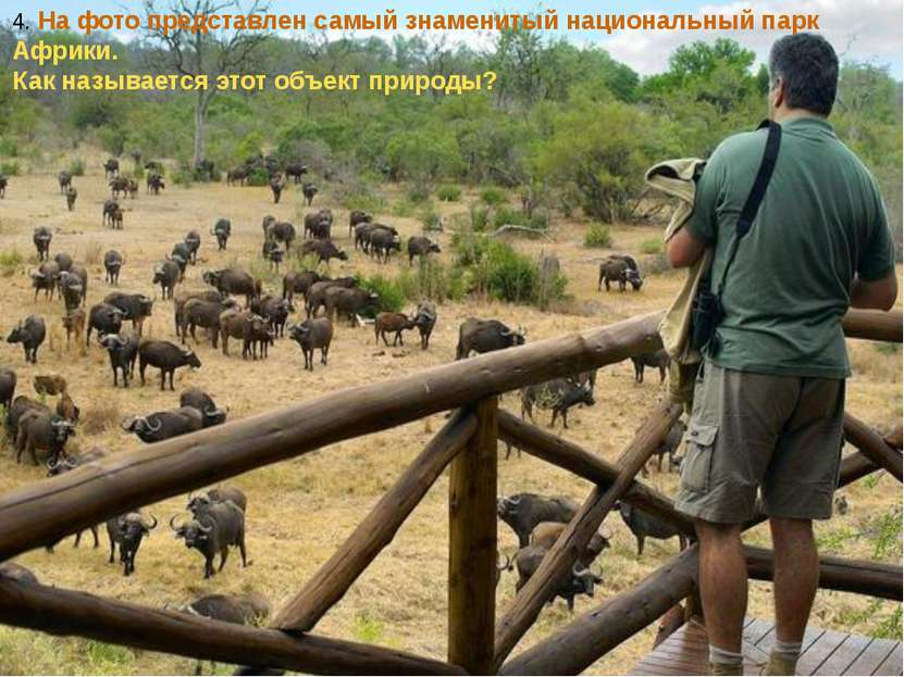 4. На фото представлен самый знаменитый национальный парк Африки. Как называе...