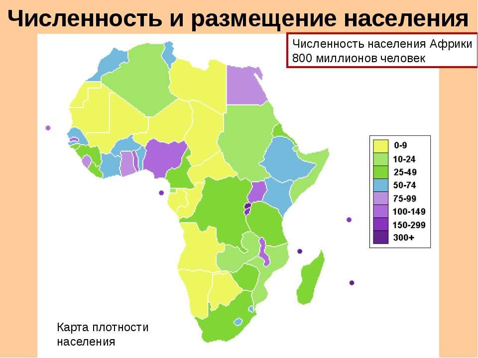 Численность и размещение населения Численность населения Африки 800 миллионов...