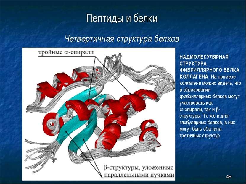 * Пептиды и белки Четвертичная структура белков НАДМОЛЕКУЛЯРНАЯ СТРУКТУРА ФИБ...