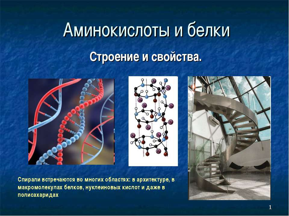 * Аминокислоты и белки Строение и свойства. Спирали встречаются во многих обл...