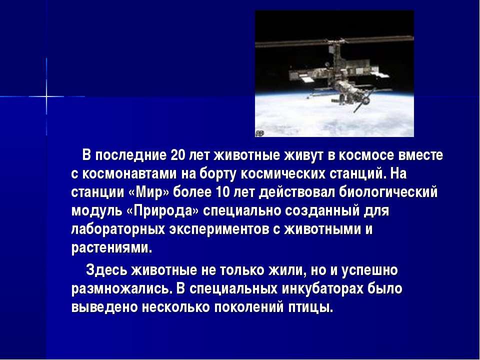 В последние 20 лет животные живут в космосе вместе с космонавтами на борту ко...