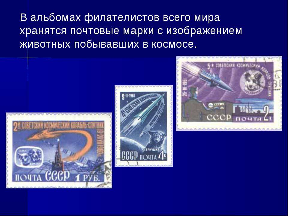 В альбомах филателистов всего мира хранятся почтовые марки с изображением жив...