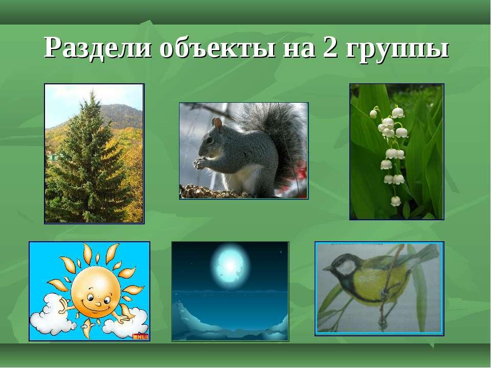 Раздели объекты на 2 группы