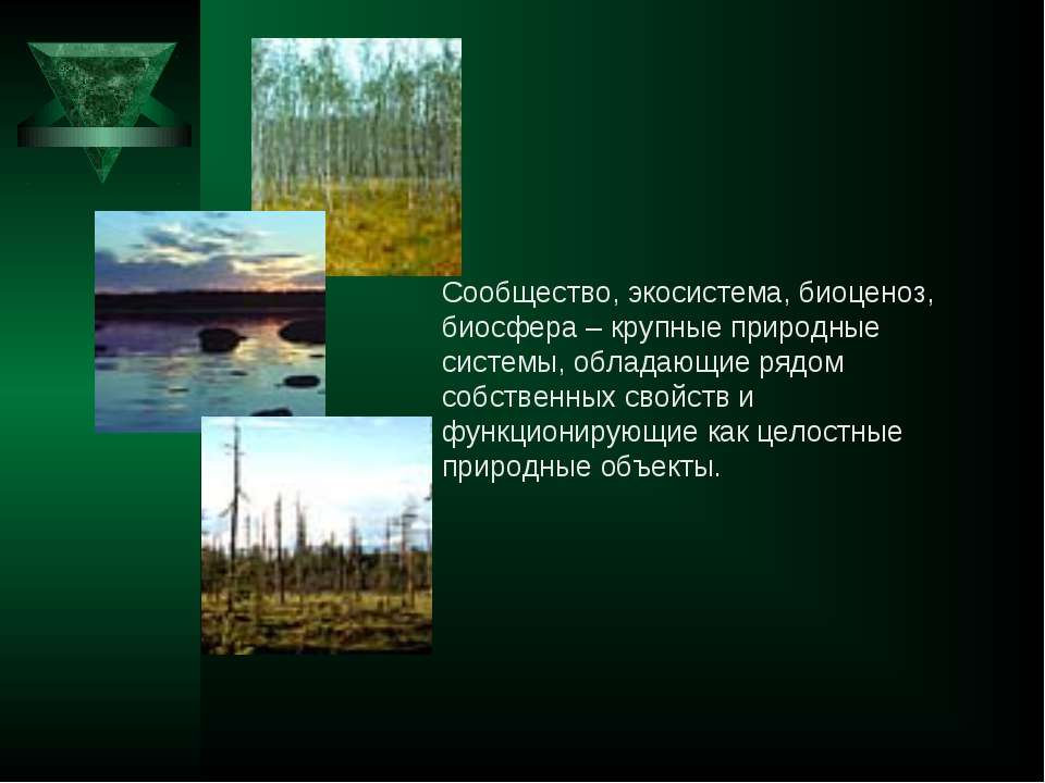 Сообщество, экосистема, биоценоз, биосфера – крупные природные системы, облад...