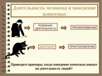Деятельность человека и поведение животных Приведите примеры, когда поведение...