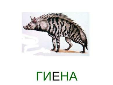 ГИЕНА