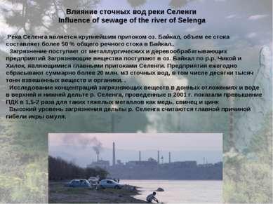 Влияние сточных вод реки Селенги Influence of sewage of the river of Selenga ...