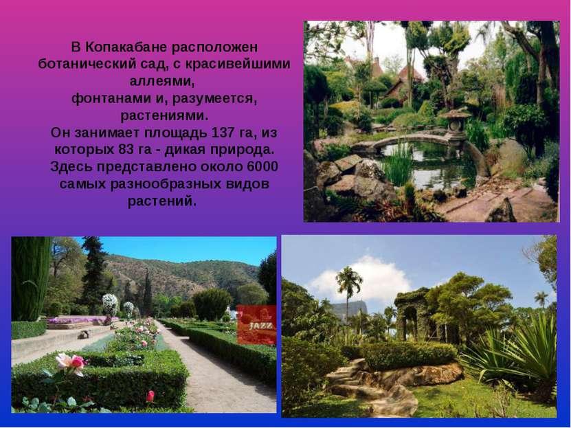 В Копакабане расположен ботанический сад, с красивейшими аллеями, фонтанами и...