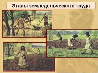 Этапы земледельческого труда