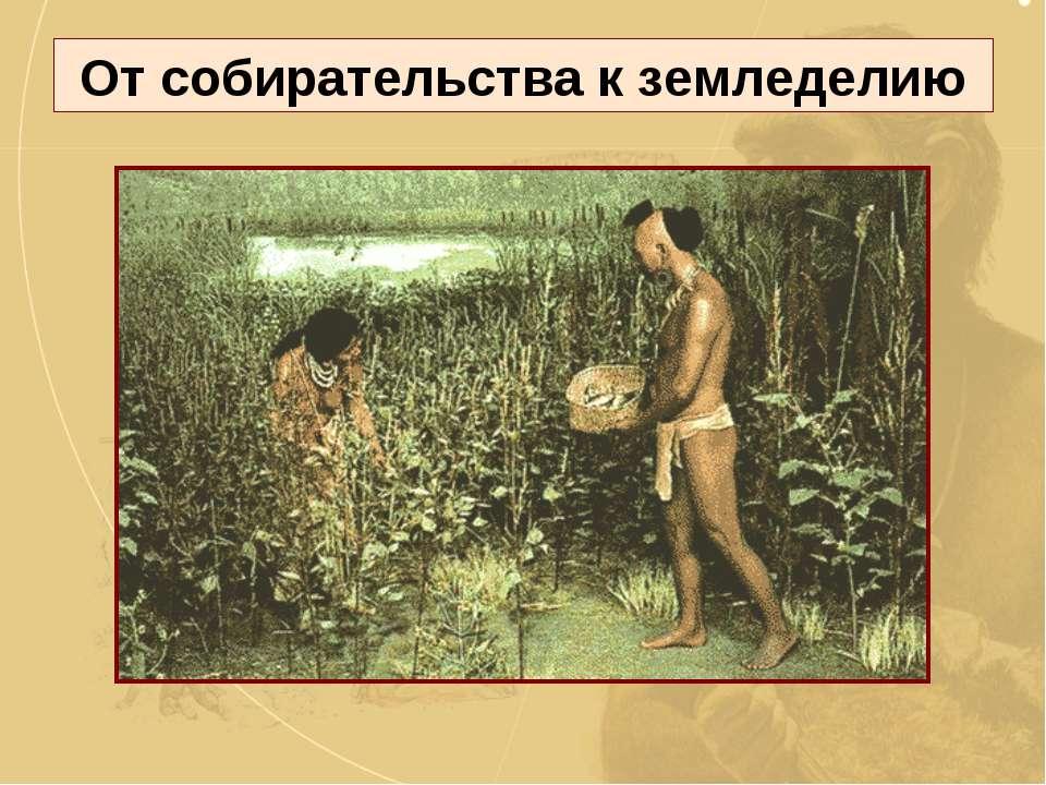 От собирательства к земледелию