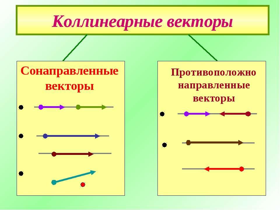 Коллинеарные векторы Противоположно направленные векторы Сонаправленные векторы