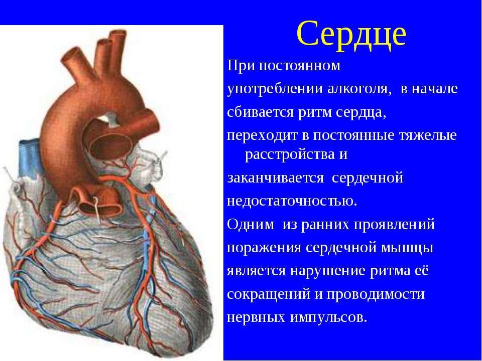 Сердце При постоянном употреблении алкоголя, в начале сбивается ритм сердца, ...