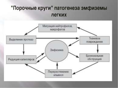 """""""Порочные круги"""" патогенеза эмфиземы легких"""