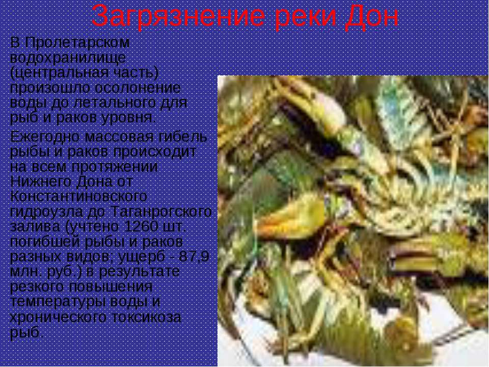 Загрязнение реки Дон В Пролетарском водохранилище (центральная часть) произош...
