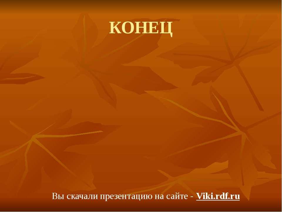 КОНЕЦ Вы скачали презентацию на сайте - Viki.rdf.ru