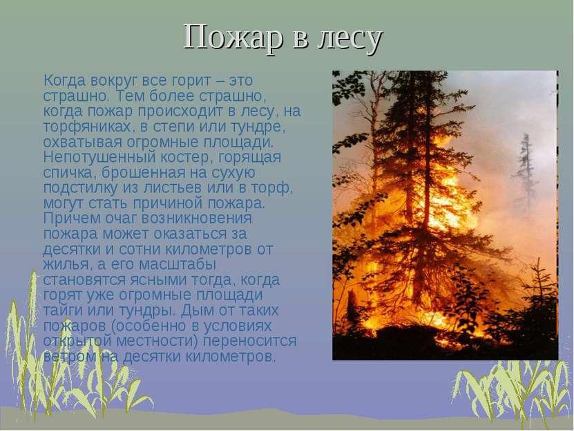 Пожар в лесу Когда вокруг все горит – это страшно. Тем более страшно, когда п...