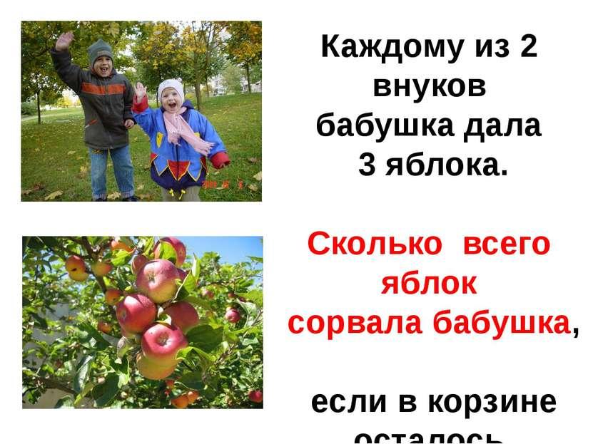 Каждому из 2 внуков бабушка дала 3 яблока. Сколько всего яблок сорвала бабушк...