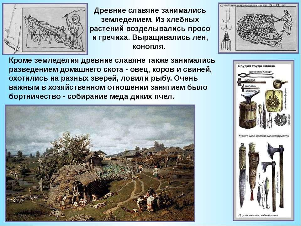 Древние славяне занимались земледелием.Из хлебных растений возделывались про...
