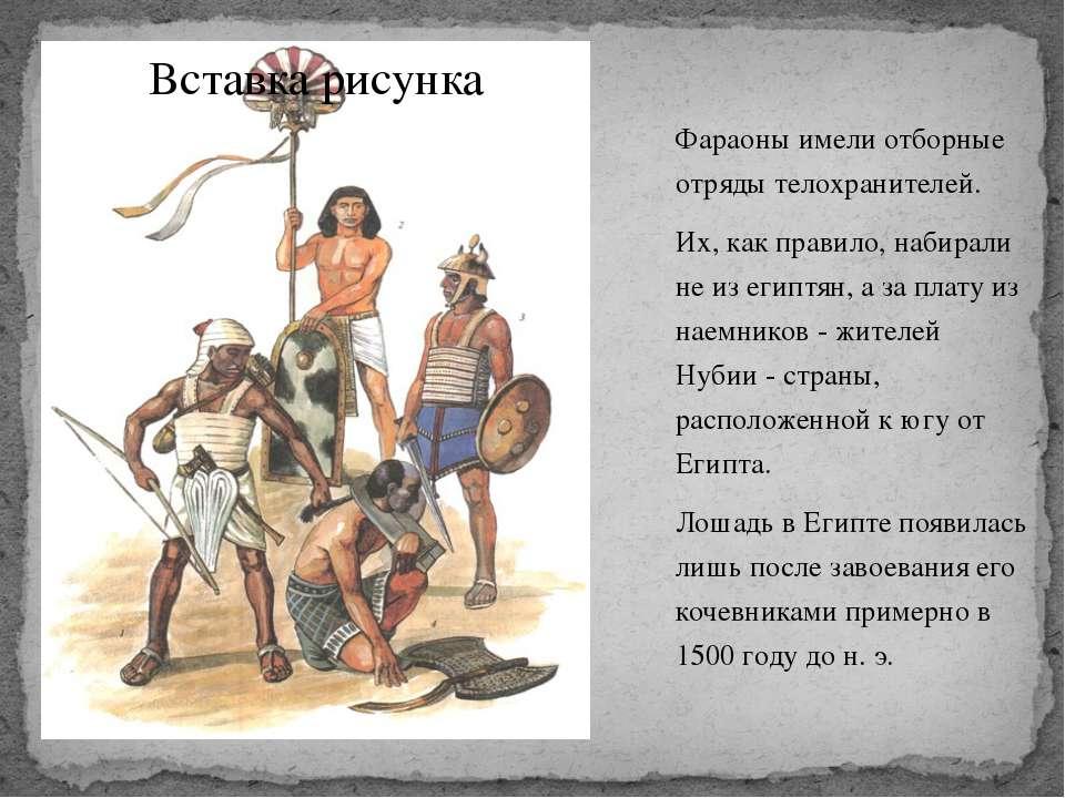 Фараоны имели отборные отряды телохранителей. Их, как правило, набирали не из...