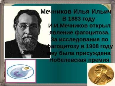 Мечников Илья Ильич В 1883 году И.И.Мечников открыл явление фагоцитоза. За ис...