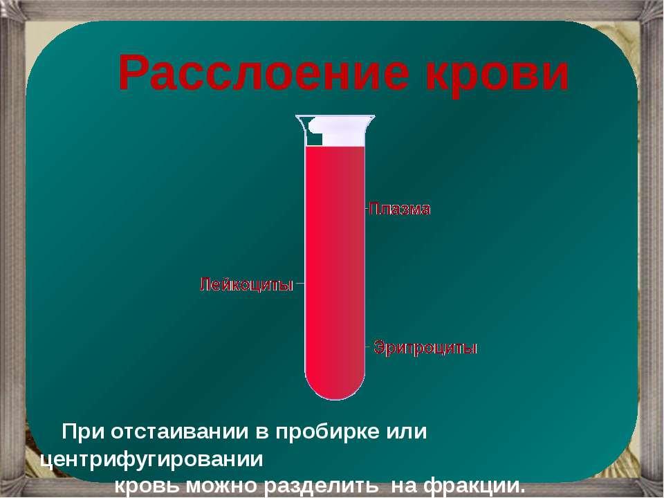 Расслоение крови При отстаивании в пробирке или центрифугировании кровь можно...