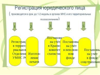 Регистрация юридического лица ( производится в срок до 1-2 недель в органах М...