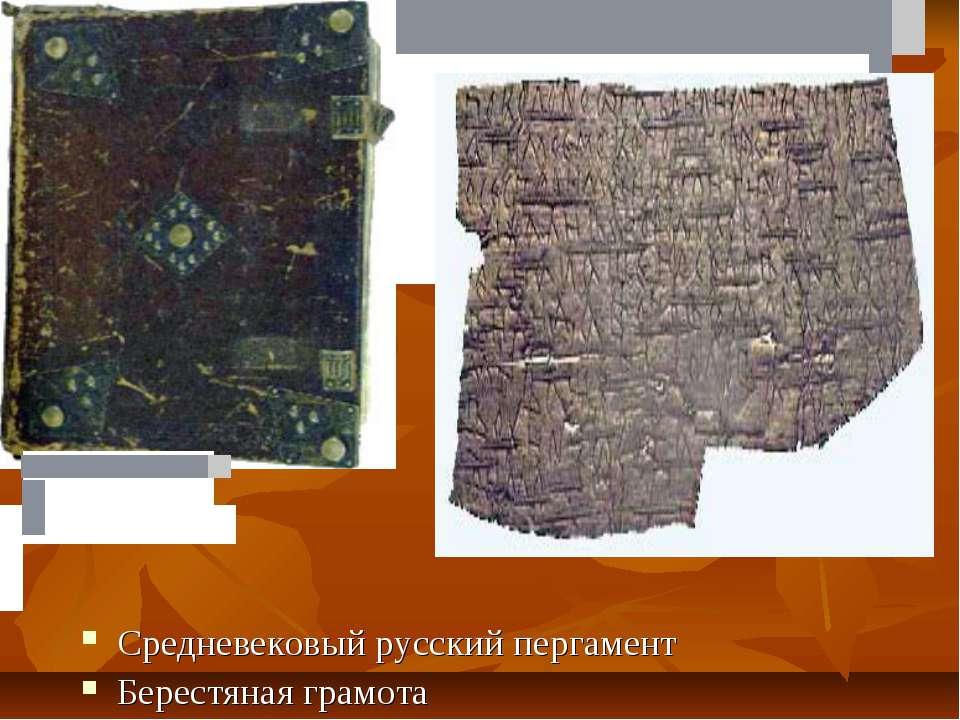 Средневековый русский пергамент Берестяная грамота  ...