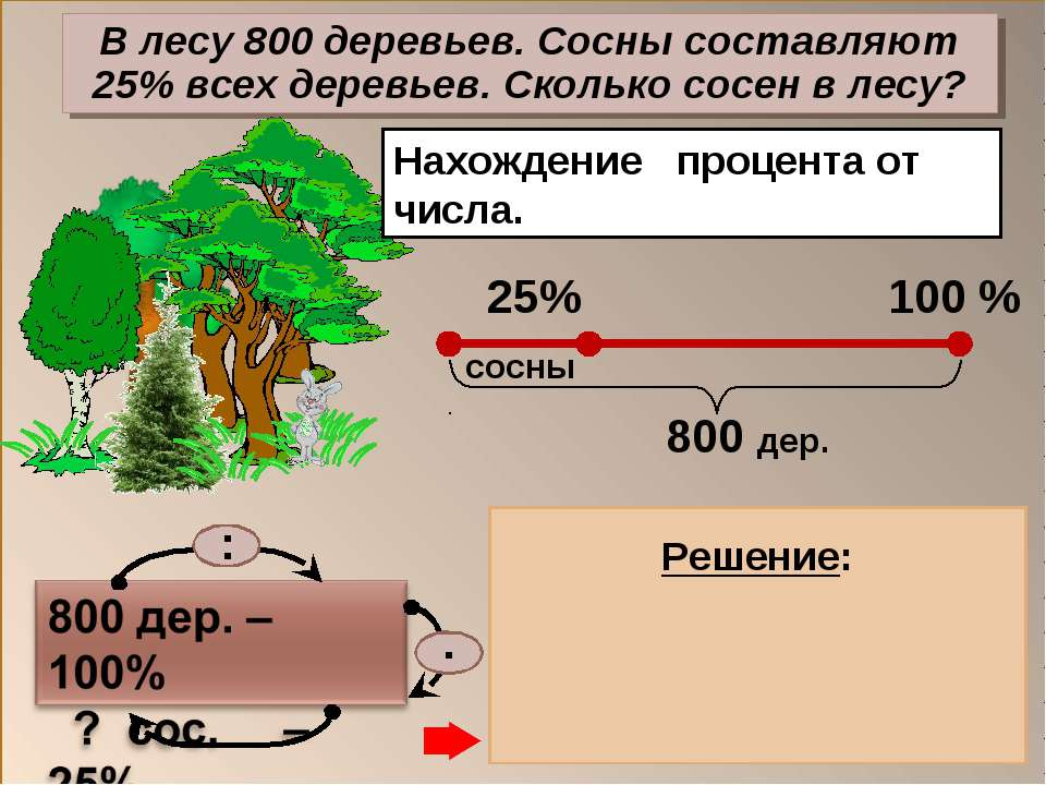 Нахождение процента от числа. 1) 800 : 100 = 8 (дер.) – 1% дер. 2) 8 . 25 = 2...