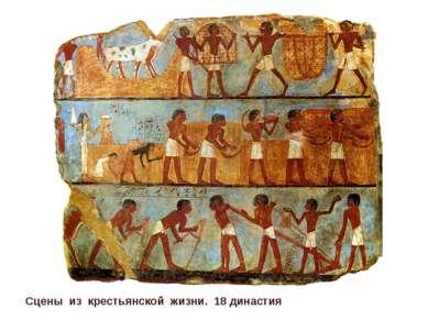 Сцены из крестьянской жизни. 18 династия