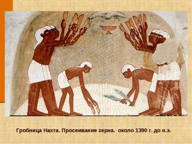 Гробница Нахта. Просеивание зерна. около 1390 г. до н.э.