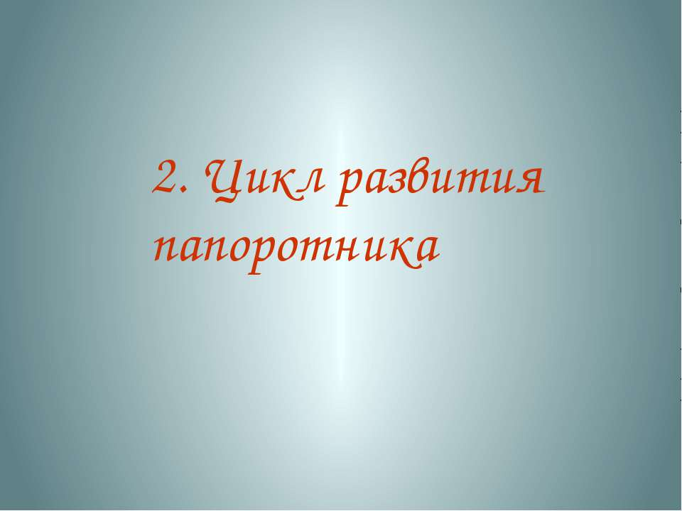 2. Цикл развития папоротника