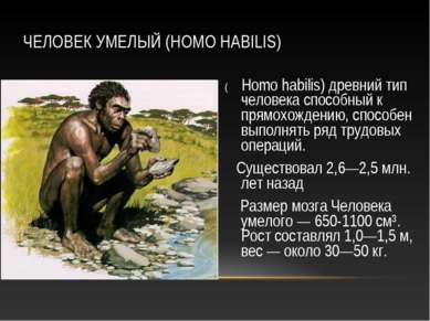 ЧЕЛОВЕК УМЕЛЫЙ (HOMO HABILIS) ( Homo habilis) древний тип человека способный ...