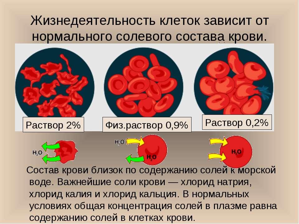 Жизнедеятельность клеток зависит от нормального солевого состава крови. Соста...