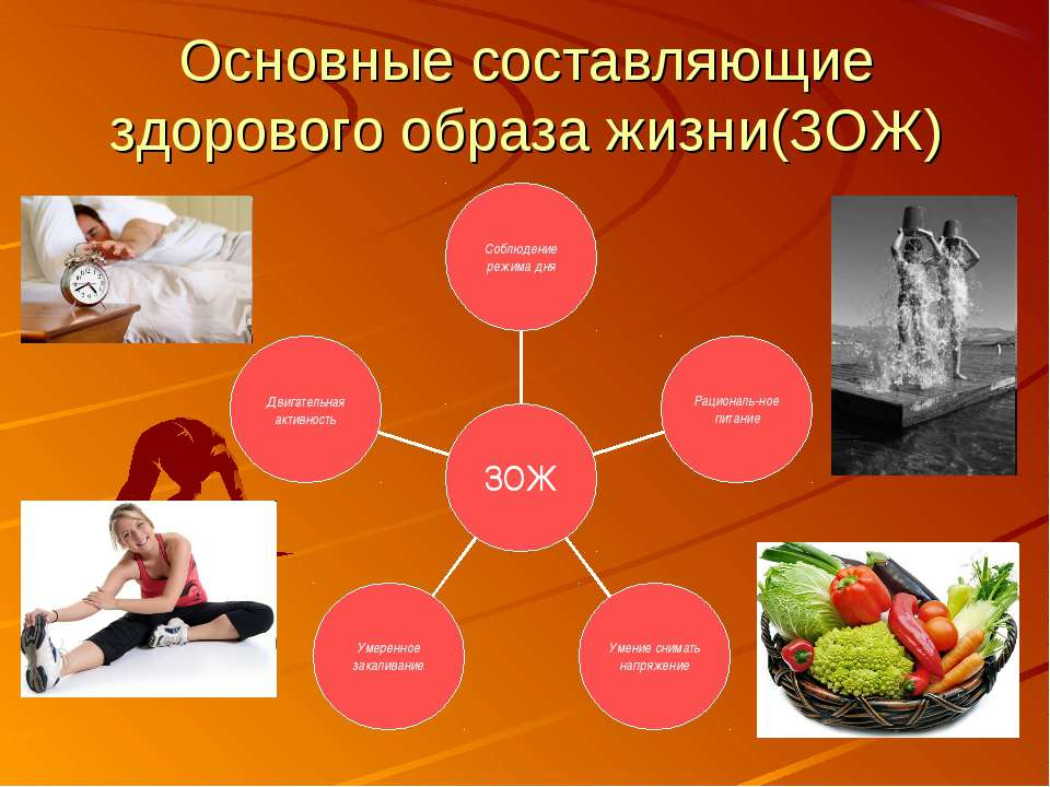 Основные составляющие здорового образа жизни(ЗОЖ)