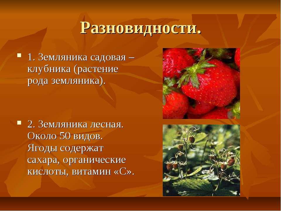 Разновидности. 1. Земляника садовая – клубника (растение рода земляника). 2. ...