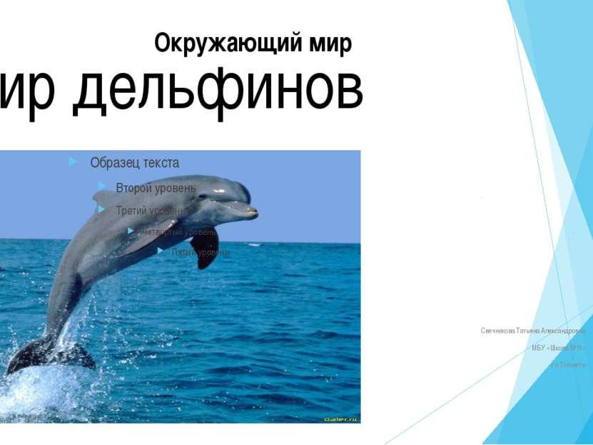Игры дельфинов Наблюдать за дельфинами в родной им стихии – одно удовольствие...