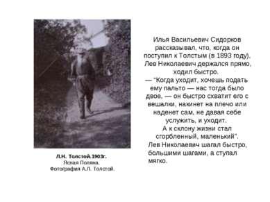 Л.Н. Толстой.1903г. Ясная Поляна. Фотография А.Л. Толстой. Лев Николаевич шаг...