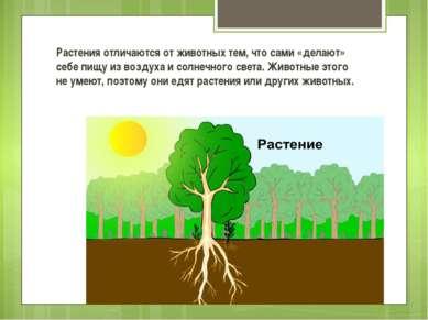 Растения отличаются от животных тем, что сами «делают» себе пищу из воздуха и...