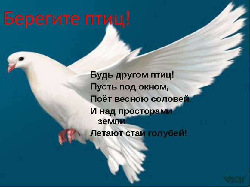 Будь другом птиц! Пусть под окном, Поёт весною соловей. И над просторами земл...