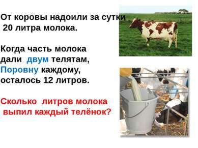 От коровы надоили за сутки 20 литра молока. Когда часть молока дали двум теля...