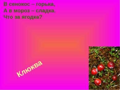 Клюква В сенокос – горька, А в мороз – сладка. Что за ягодка?