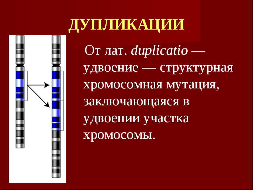 ДУПЛИКАЦИИ От лат. duplicatio — удвоение — структурная хромосомная мутация, з...