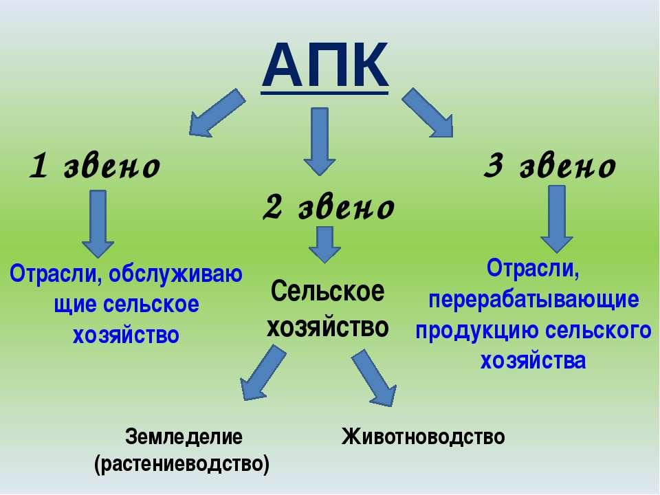 АПК 1 звено 2 звено 3 звено Отрасли, обслуживаю щие сельское хозяйство Сельск...