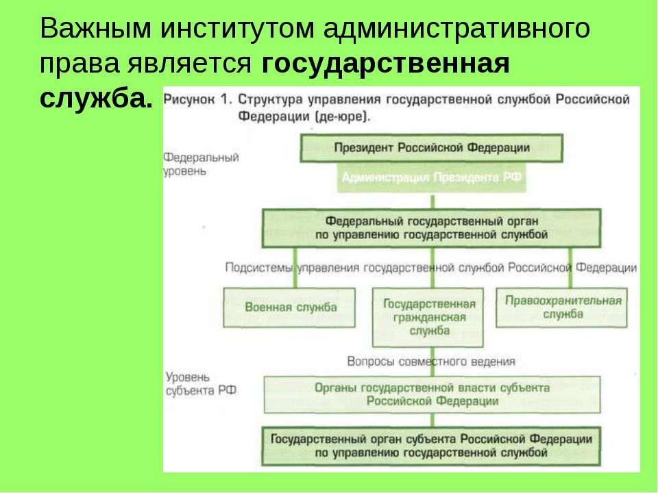 Государственная Служба В Системе Административного Права Шпаргалка